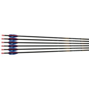 Easton X10 Protour Fletched Arrows - Dozen